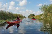 Tura caiac in Delta Dunarii